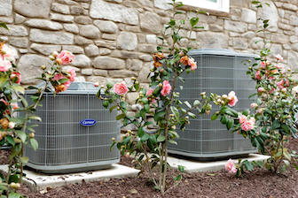 two Carrier air conditioning unit behind rose bushes