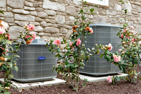 New HVAC system surrounded by roses